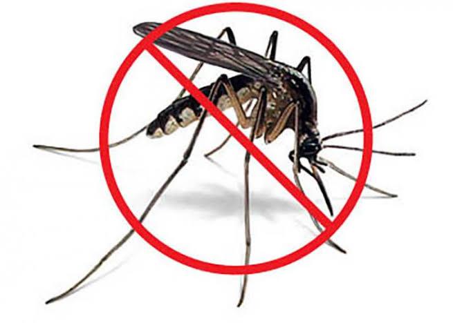 São Manuel registra 12 casos positivos de dengue até esta sexta-feira 27 de março