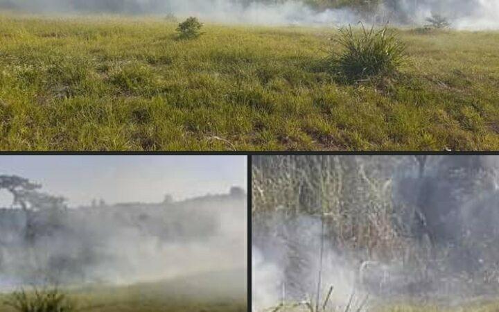 Prefeitura notificará proprietário de terreno que pegou fogo próximo a Av. Aldo Marini