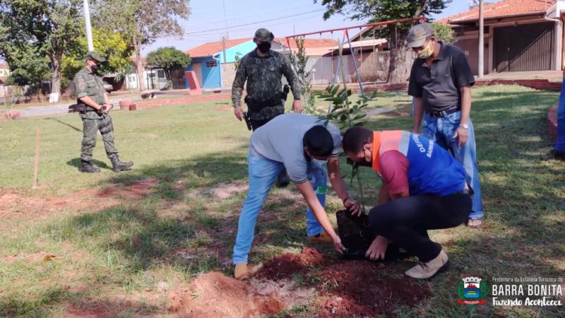 Barra Bonita planta árvores frutíferas em espaços públicos